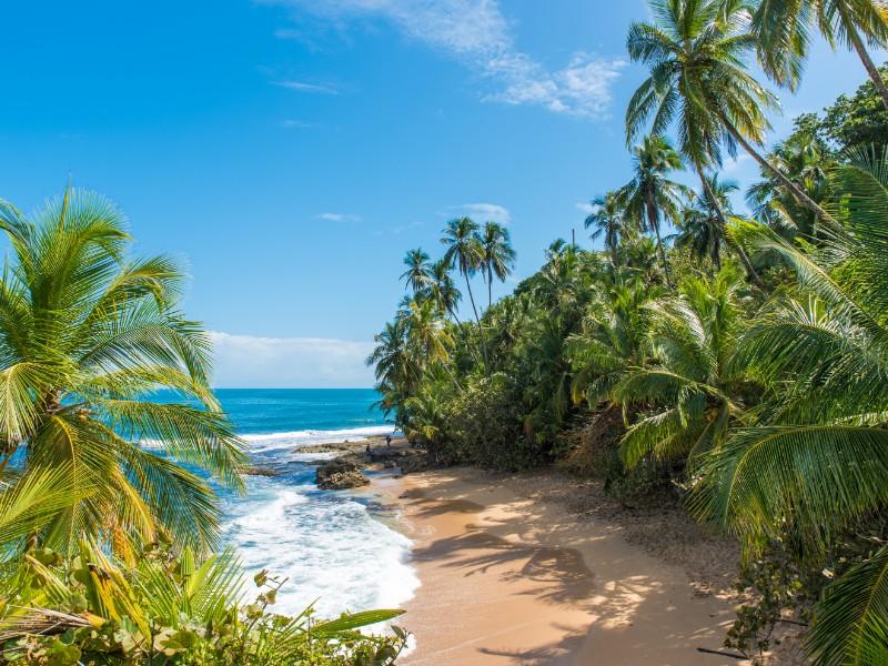 Gondoca-Manzanillo National Wildlife Refuge,  Manzanillo Beach, Costa Rica