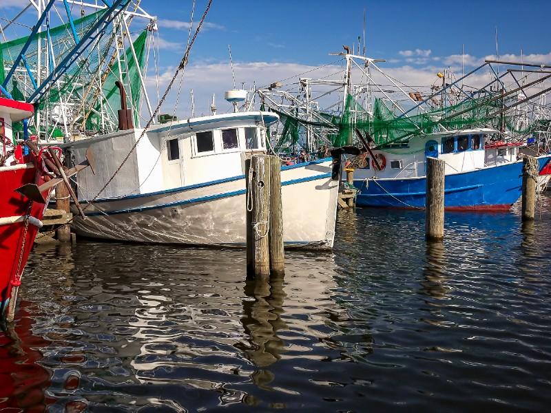 Colorful shrimp fishing boats docked in harbor at Biloxi