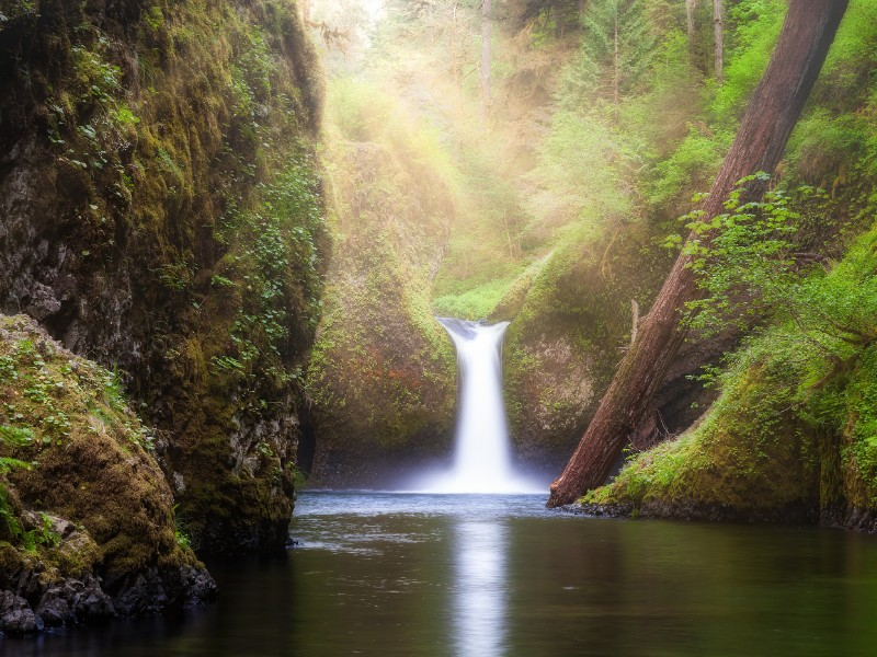 Punch Bowl Falls on Eagle Creek in the Columbia Gorge, Oregon