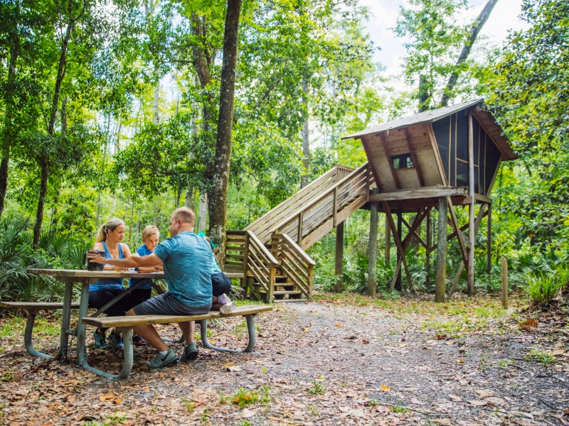 Treehouse Point, Camp Chowenwaw