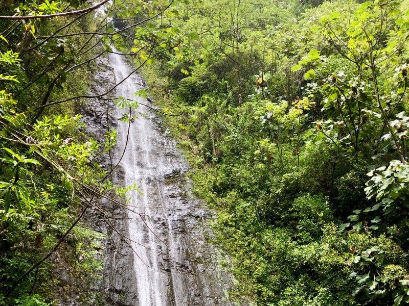 View of Manoa Falls