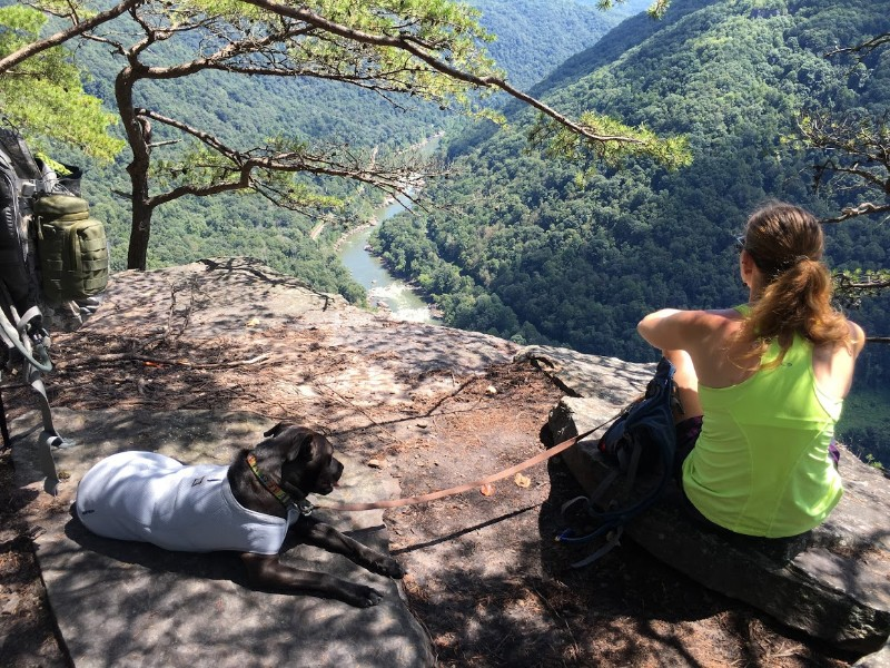 Overlooking the New River Gorge