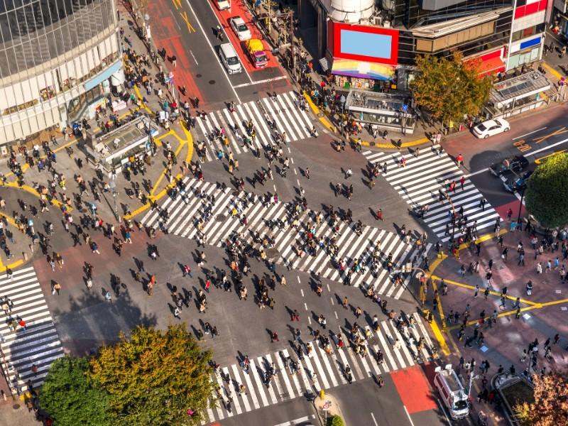 View of Shibuya Crossing