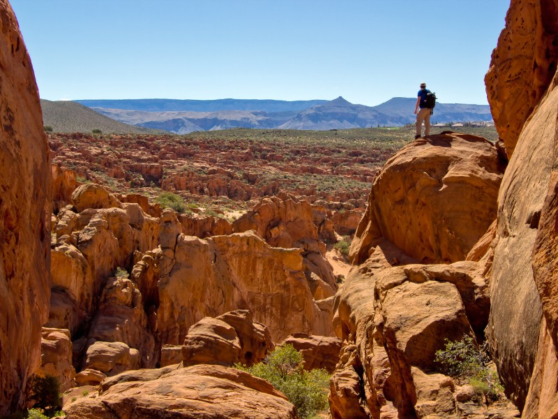 Head to Red Cliffs National Conservation Area for some (very) alone time.