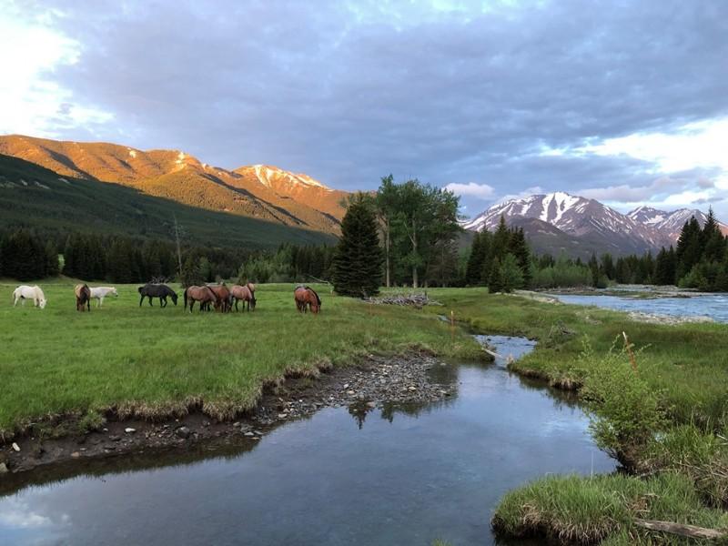 Sweet Grass Ranch - Big Timber, Montana