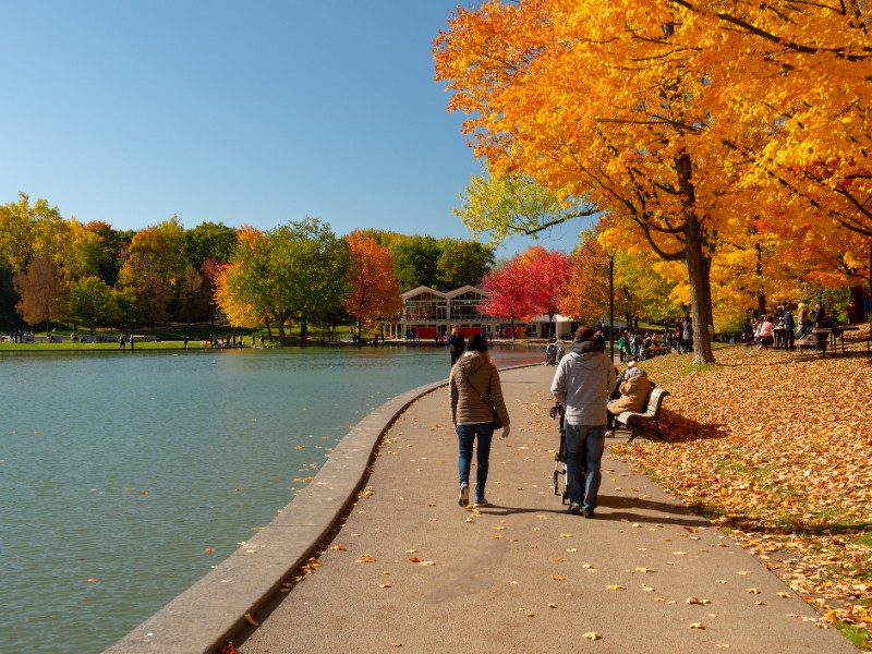 Beaver Lake, Mount Royal Park, Montreal in autumn