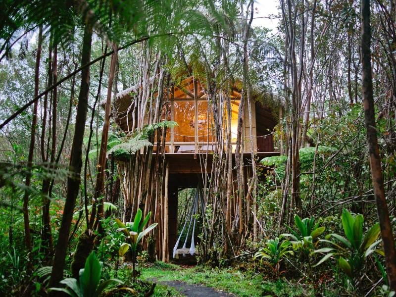 Dreamy Tropical Tree House Airbnb Maui