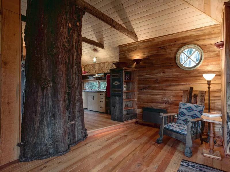 Sir Cedric's Cedar Treehouse