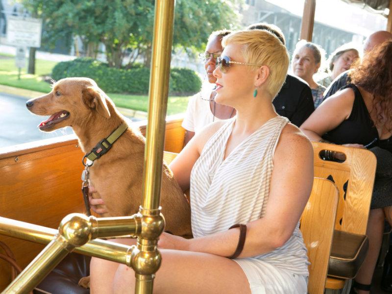 Old Savannah trolley tour