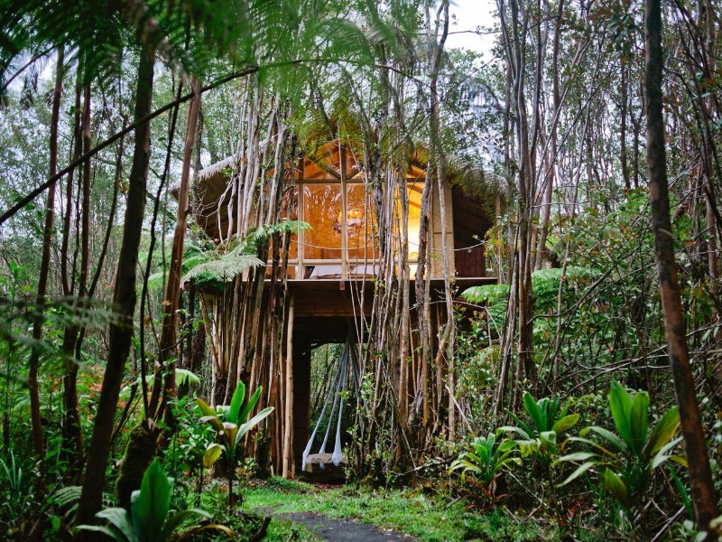 Dreamy Tropical Treehouse
