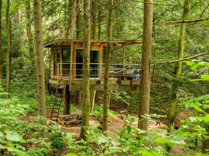 Flying-Squirrel Treehouse