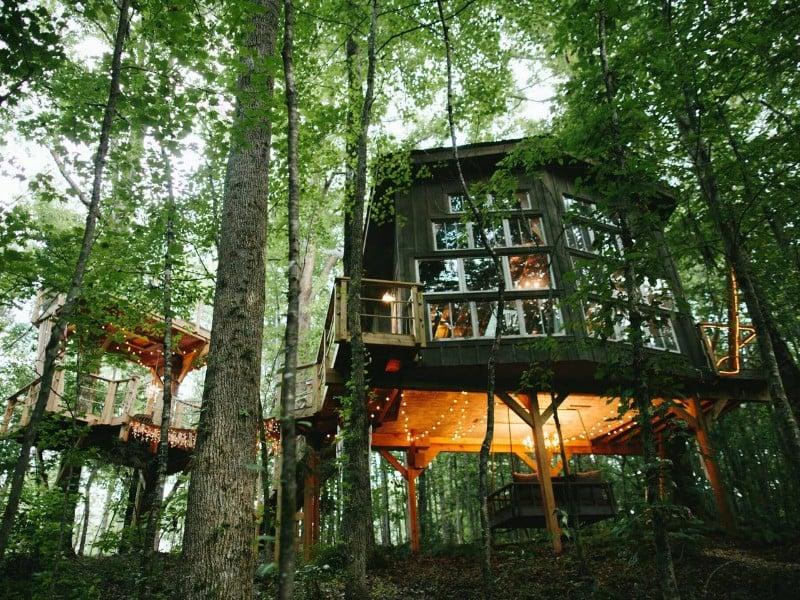 Majestic Treehouse Retreat