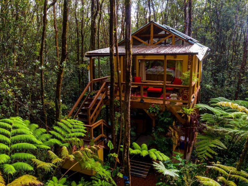 Peaceful Rainforest Treehouse Retreat