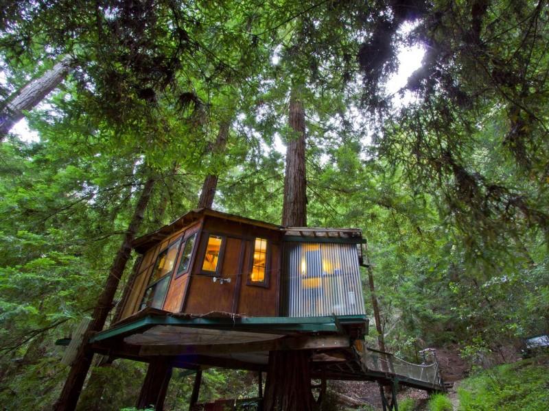 Redwood Treehouse Santa Cruz Mtns