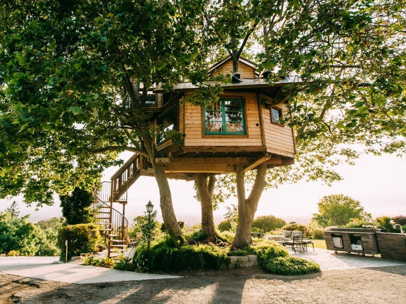 Silicon Valley Treehouse