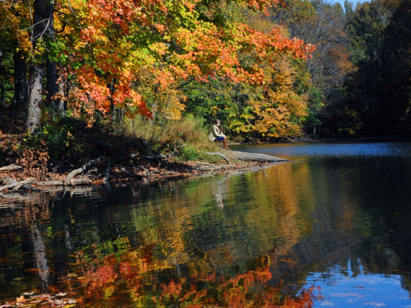 autumn at Meeman Shelby Forest State Park