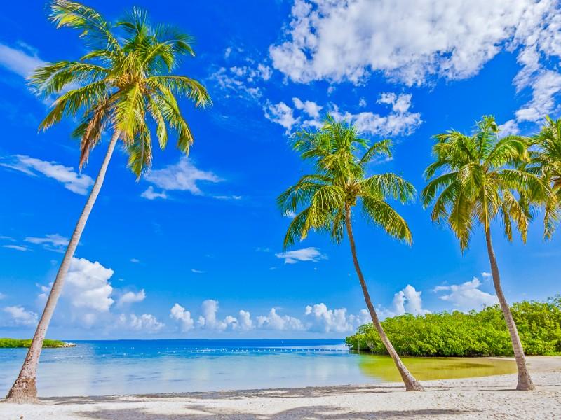 Founders Park, Islamorada, Florida Keys