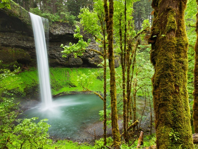 South Falls in the Silver Falls State Park