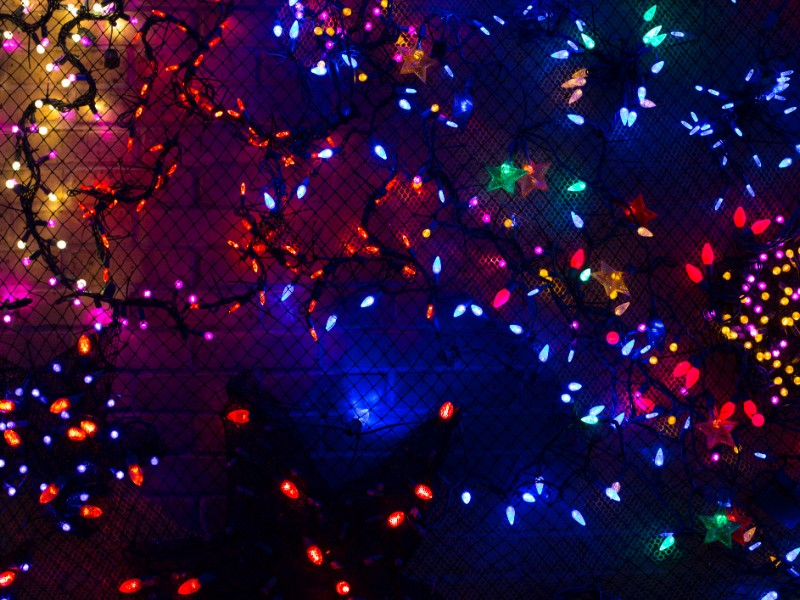 Houston Zoo Light decoration for Christmas
