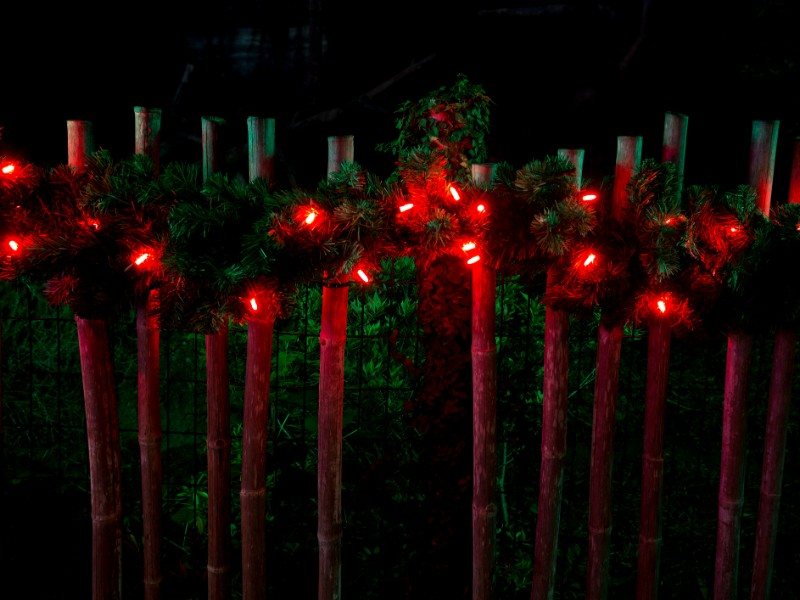 Decorated with Christmas red lights on fence