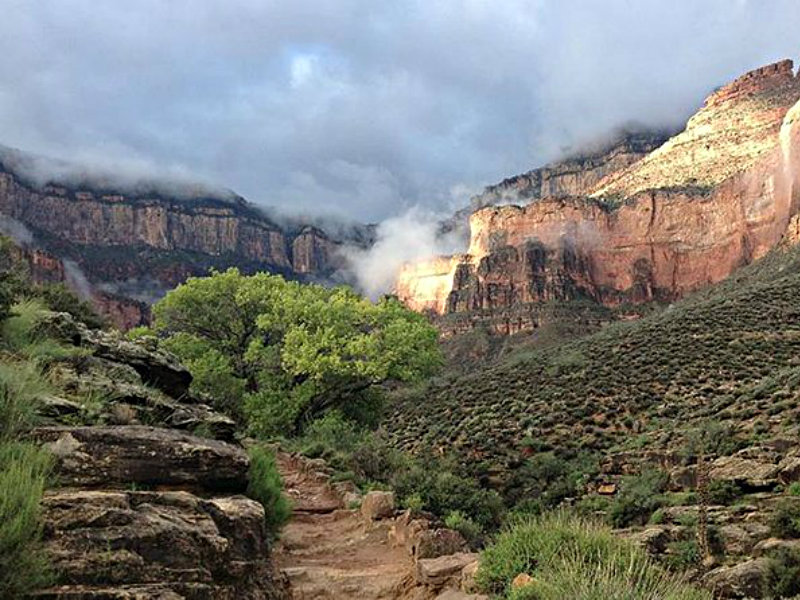 Bright Angel Trail Day Hike Tour