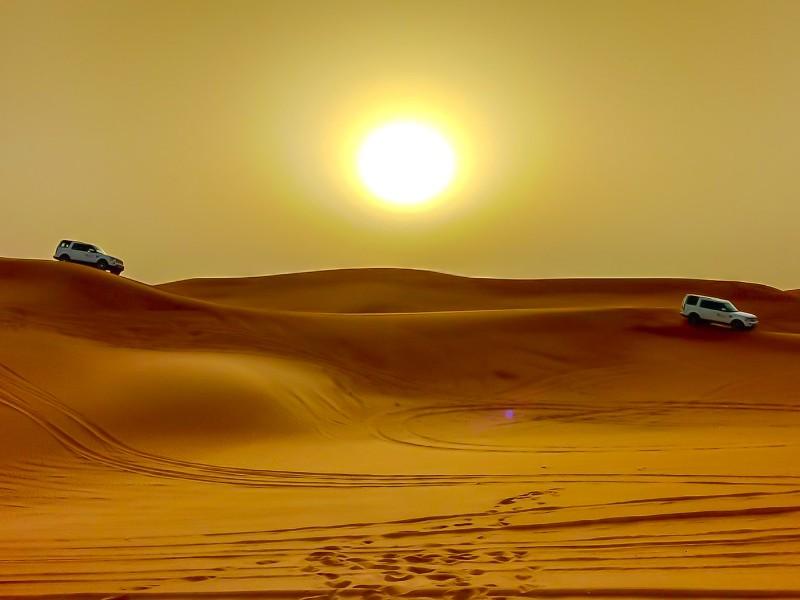 Explore the desert with a desert safari