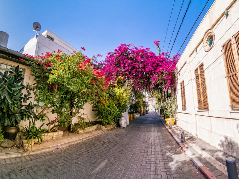 Neve Tzedek district