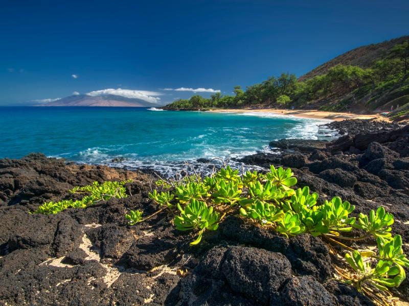 Little Beach, Makena State Park, South Maui
