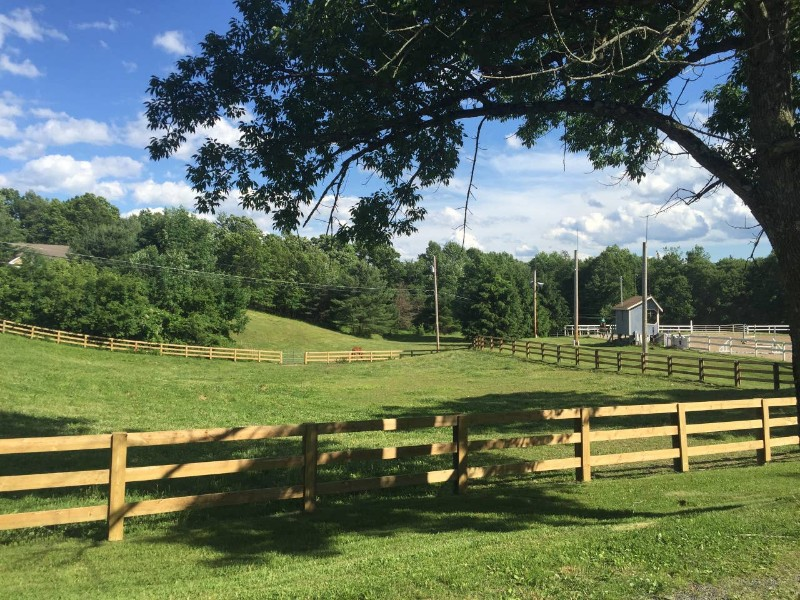 Serene view at Guest House at Pleasant Ridge Farm
