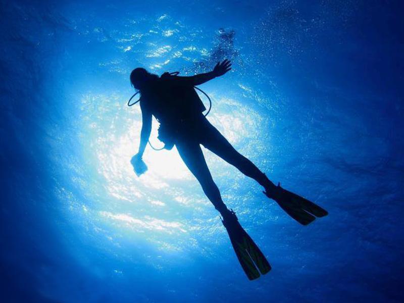 Explore underwater treasures with Stuart Scuba.