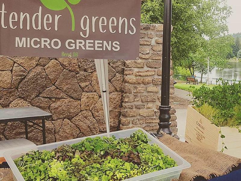 Tender Greens Bend