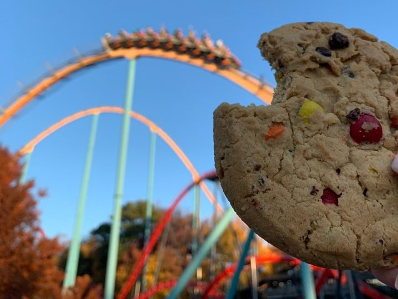 roller coasters and cookies