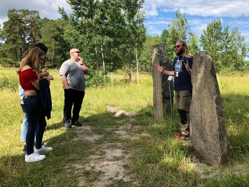 Viking History Small Group Tour from Stockholm: Half Day Including Sigtuna