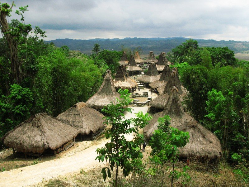 Traditional village in Sumba, Indonesia