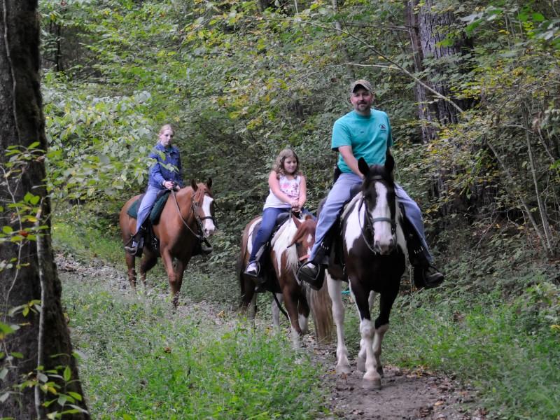 See the Smokies on horseback