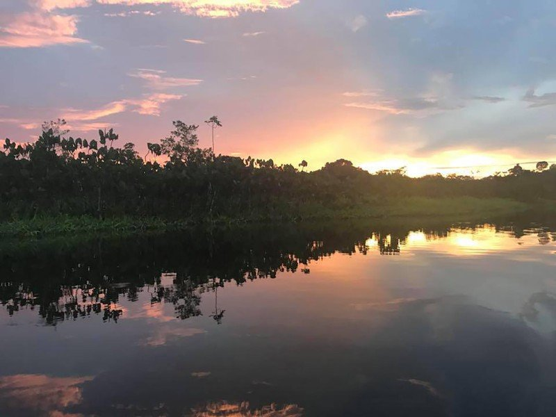 Sunset at Sani Lodge, Ecuadoran Amazon