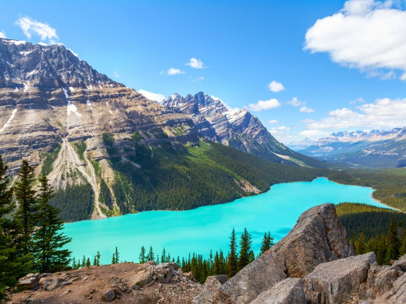 Peyto Lake off Icefields Parkway, Alberta, Canada