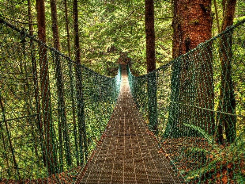 Juan de Fuca Trail Suspension Bridge, Vancouver Island, BC