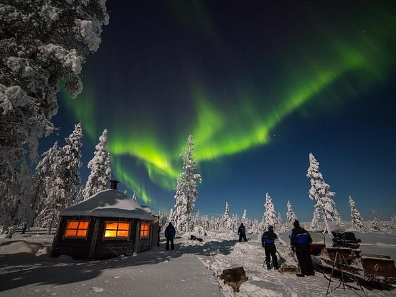 Night of Reindeer and Northern Lights