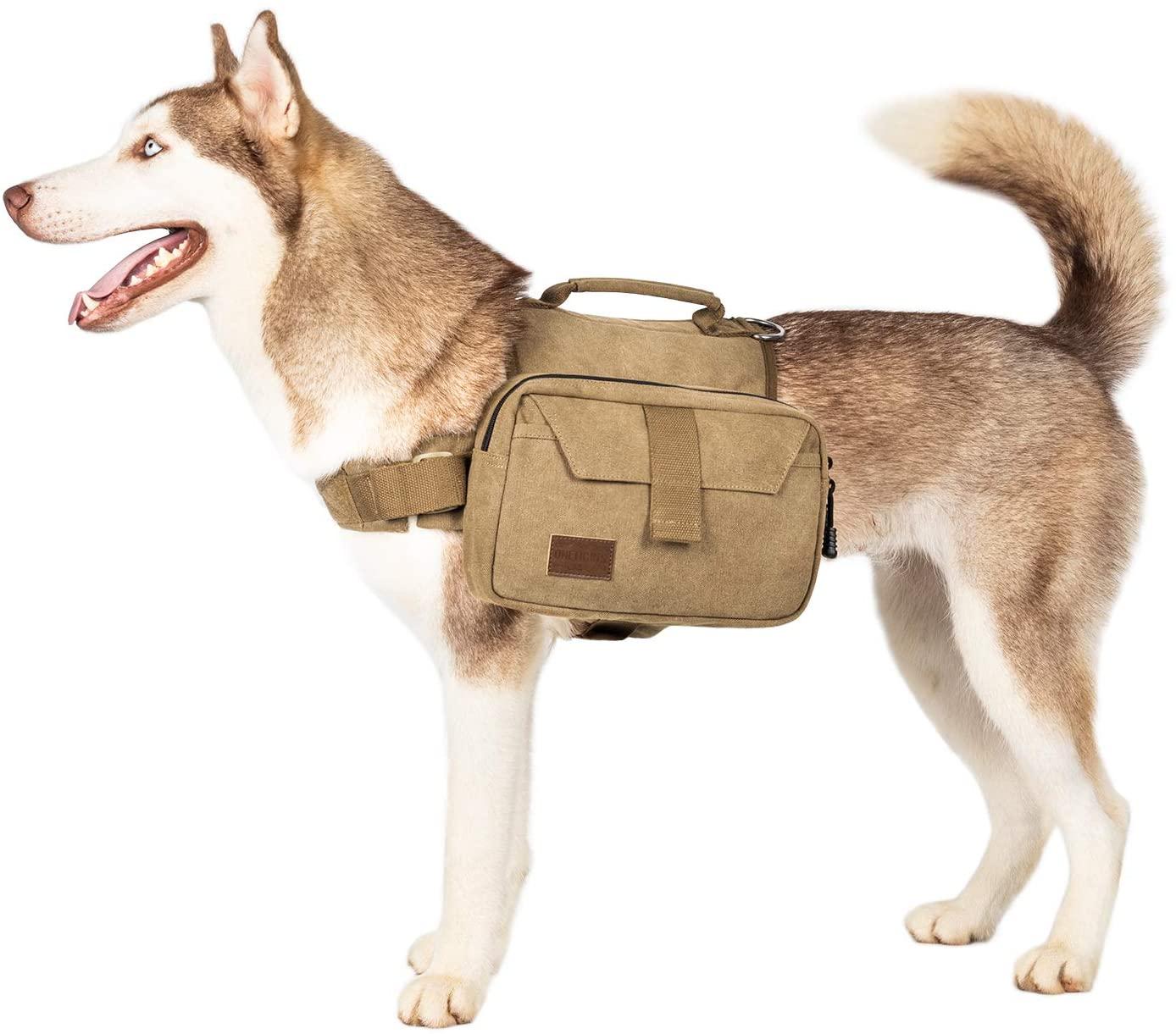OneTigris Dog Pack