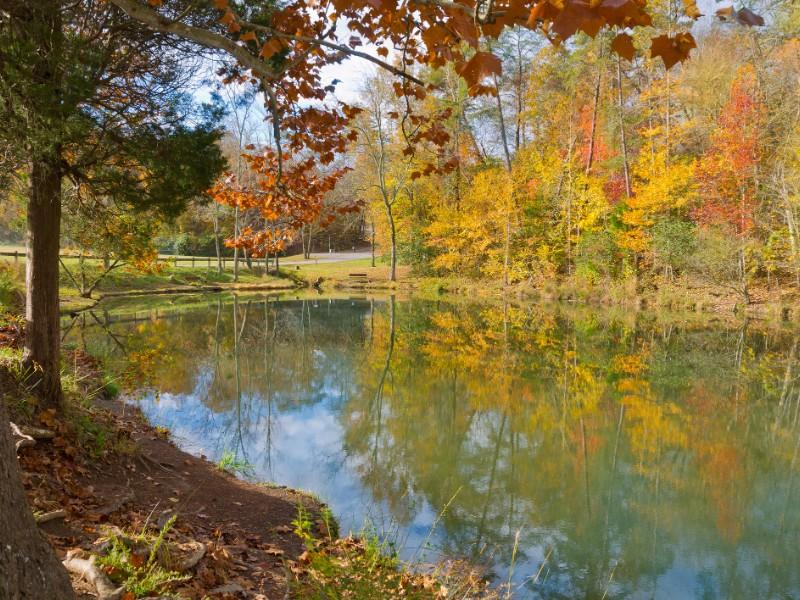 Lake view at Big Ridge State Park