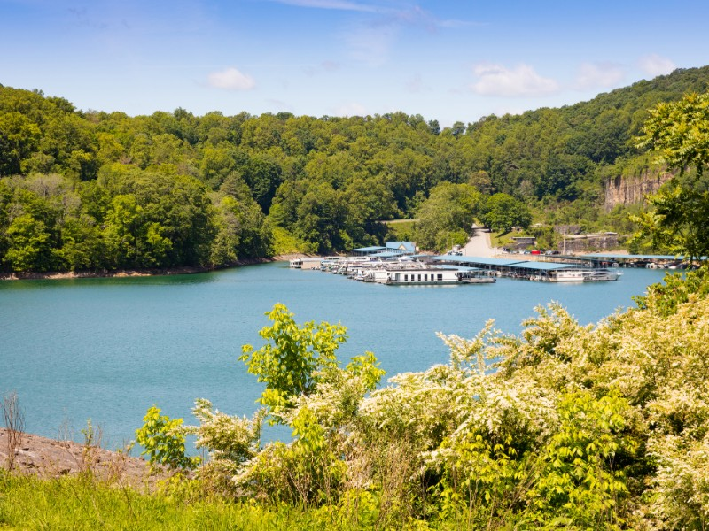 View of the lake and marina above the dam at Norris Dam State Park