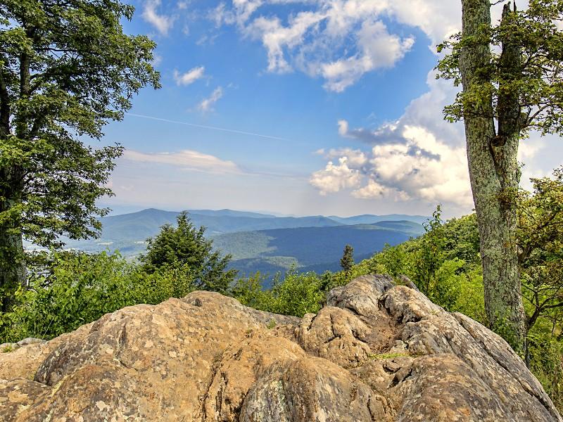 View in Shenandoah National Park