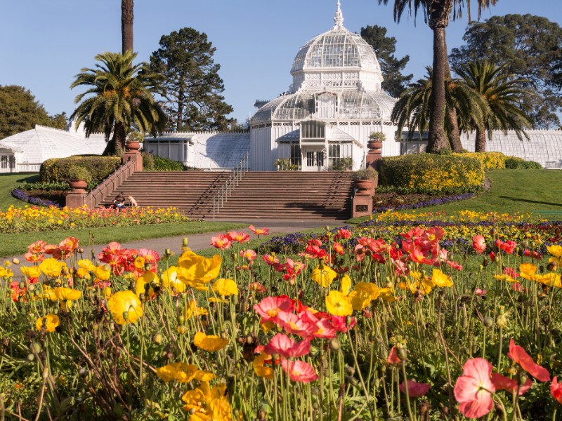 Springtime in San Francisco's Golden Gate Park with the Conservatory of Flowers building.