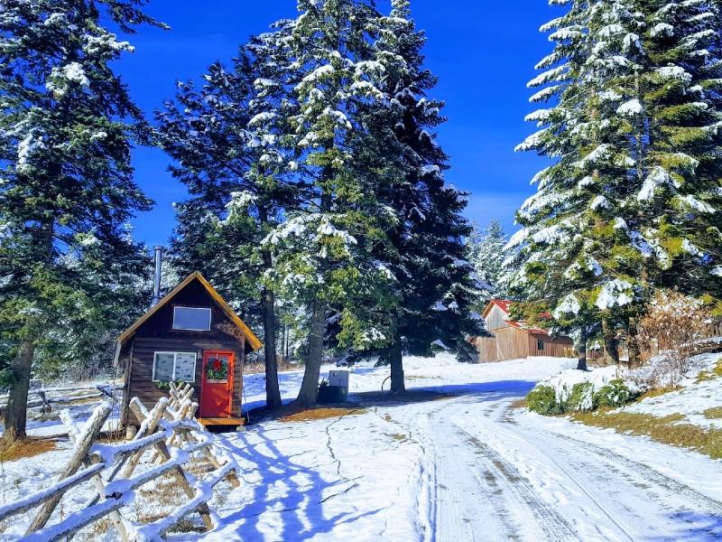 Mountaintop Cabin/Tiny House