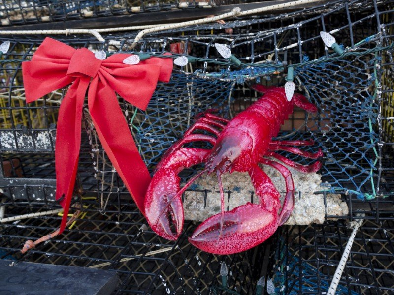 The Lobster Pot Christmas Tree, Provincetown, Massachusetts