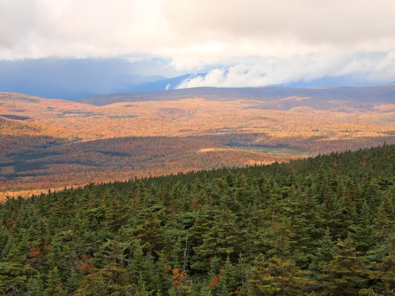 Green Mountain National Forest in Fall from Stratton Mountain