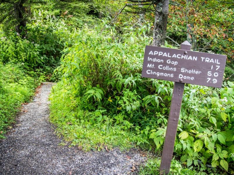 Appalachian Trail Summit