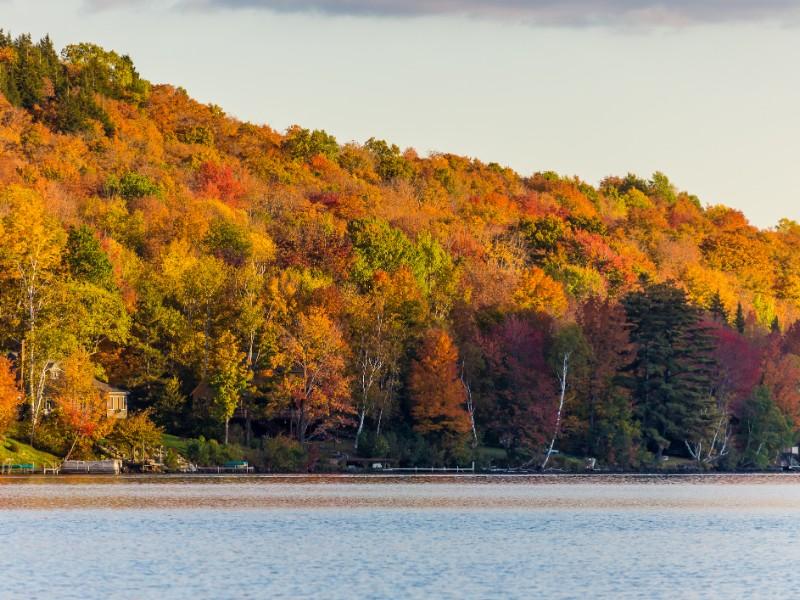 Autumn foliage in Vermont, Elmore State Park