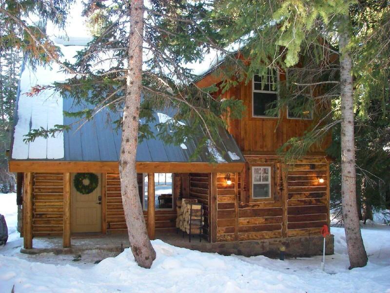 The Cozy Cabin...BEST DEAL IN BRIGHTON